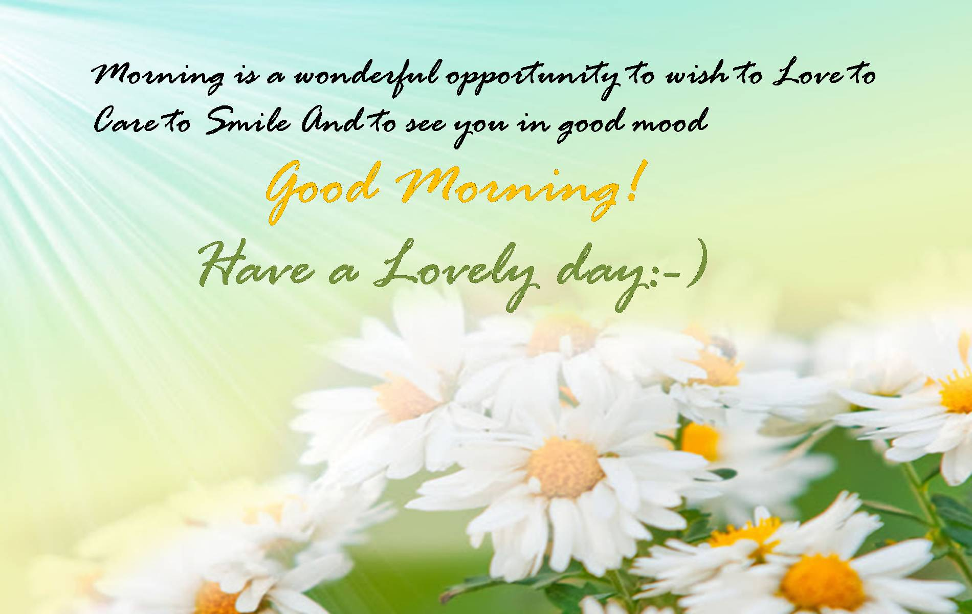 Love Good Morning And Good Night Wallpaper : Good morning Happy Wishes