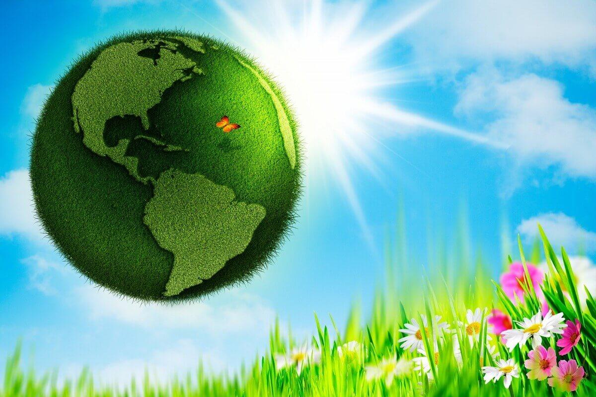 Картинки на день экологии, картинки день знаний